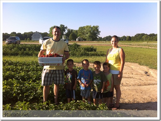 family strawberry picking