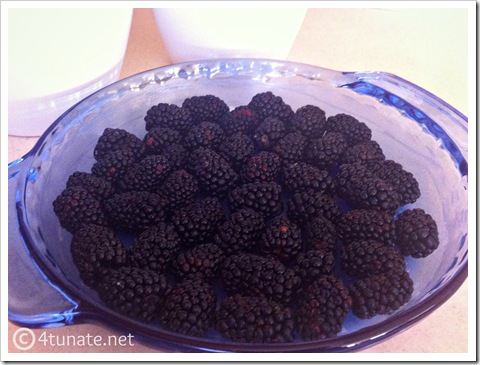 easy homemade blackberry cobbler
