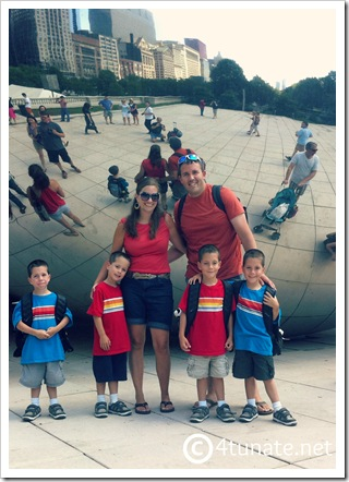 the bean family picture chicago millineum park