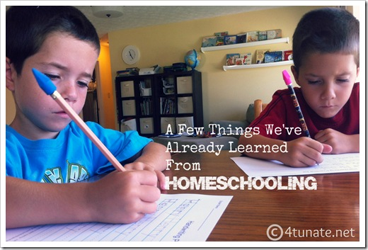 things we've already learned from homeschooling