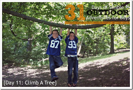 Day 11 Climb A Tree Simple Outdoor Adventures for Boys