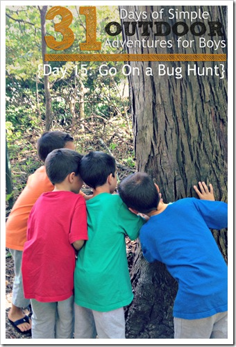 Day 15 Go On a Bug Hunt Simple Outdoor Adventures for Boys
