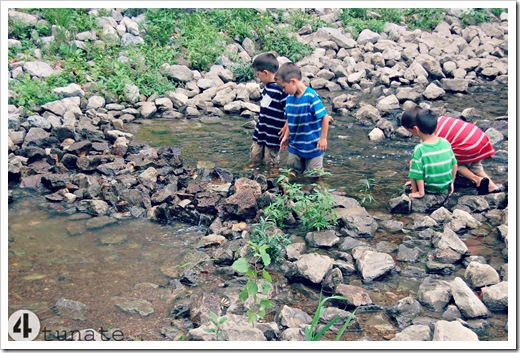 teaching boys to dam a creek