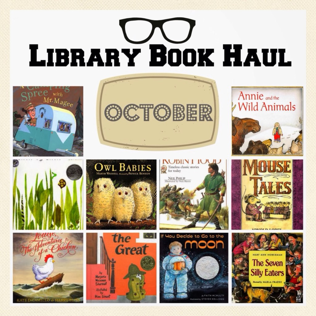 october-library-book-haul-books-to-check-out