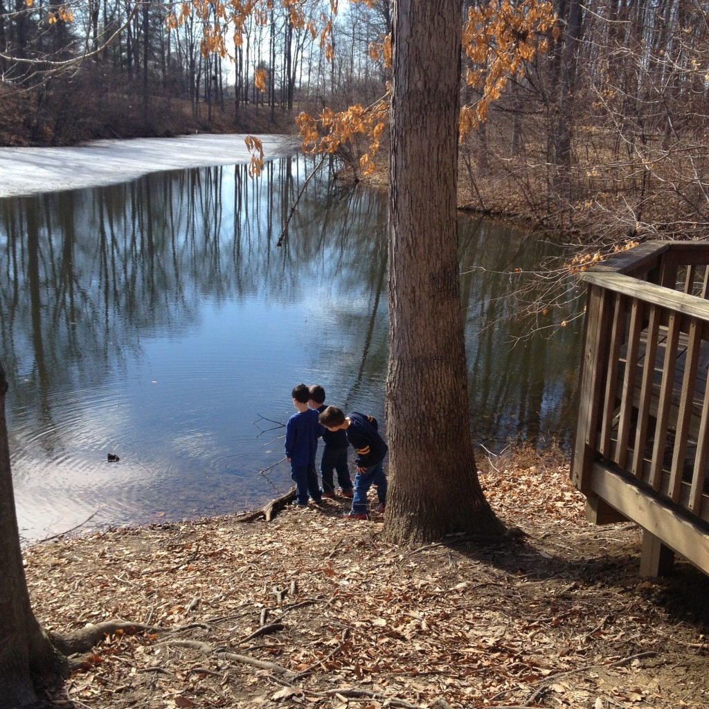 ice-thawing-in-pond-reflection-kids
