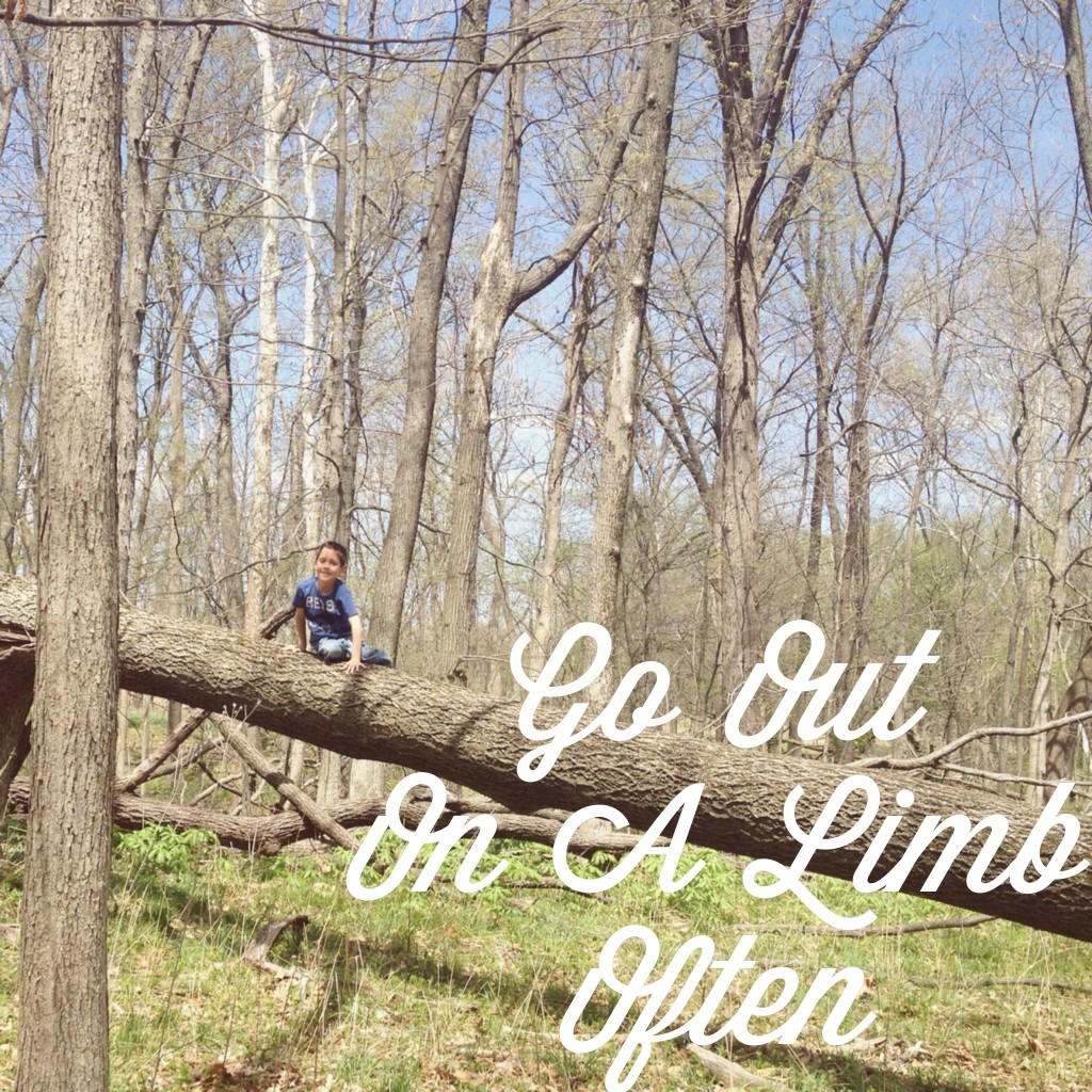 go-out-on-a-limb-often